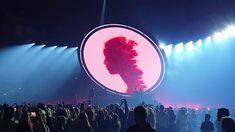 Shawn Mendes – In Japan verloren (Live, Wien) – HoG Alpha Shawn Mendes Tour, Japan, Vienna, Live, Tours, Concert, Shawn Mendes Concert, Music, Okinawa Japan