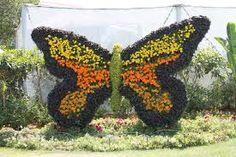 garden design, butterfly - Google Search
