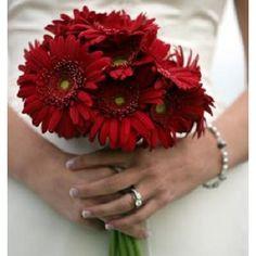 $65 for 12 gerber daisies Wedding Flowers - Bridal Bouquet # 55