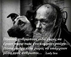My Best Friend, Best Friends, Thinking Out Loud, Greek Quotes, Lady, I Am Awesome, Thoughts, Animals, Nice