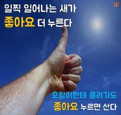 좋아요속담_p3 | 출처: web7minutes