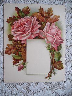 Antique ROSES Print Chromolithograph Oak Leaves Acorns Rose c1910