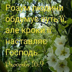 Своїм словом зміцни мої кроки, і не дай панувати надо мною ніякому прогріхові.  [Пс. 119:133]