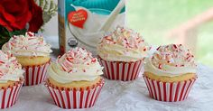 This Vegan Candy Cane Cupcake instantly lights up a room and taste buds. These cupcakes are colorful and delicious!