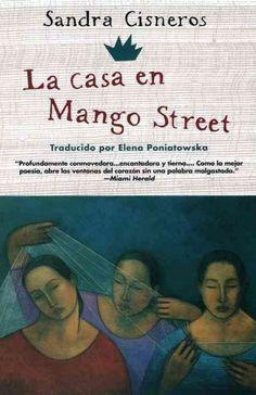 Sandra cisneros themes writing a book