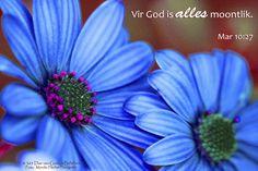 Dag 30 Bybelvers: Markus 10:27 Vir God is alles moontlik.