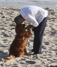 Awww...George Clooney nuzzles up to a dog...it can't get better then this!