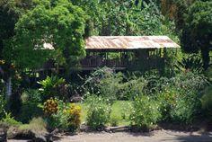 golfo dulce choza @ www.mytropicalhut.com