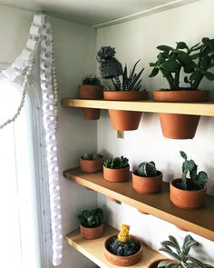 Living in a camper or motorhome doesn't mean you have to give up your love of plants! Here are some ideas for growing herbs, vegetables, and other green things while living in an RV! Motorhome, Painting Fabric Furniture, Bus Living, Living In An Rv, Living In A Camper, Small Living, Living Room, Camper Life, Bus Life