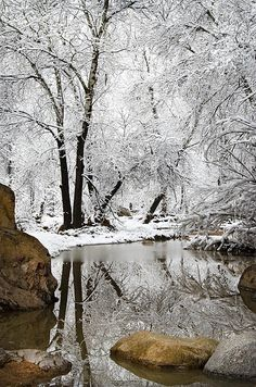 I would like to see a winter scene in real life for just one day. I only know temperatures in the 70's and 80's!