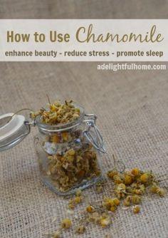 How to use chamomile - promote sleep-enhance beauty-reduce stress