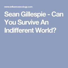 Sean Gillespie - Can You Survive An Indifferent World?