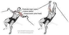 3*12Incline cable fly. An isolation push exercise. Main muscles worked: Clavicular (upper) Pectoralis Major, Anterior Deltoid, and Biceps Brachii (short head).