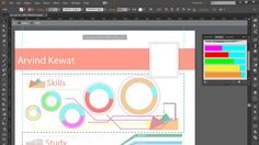 professional Infographics adobe illustrator cc ultimate tutorials