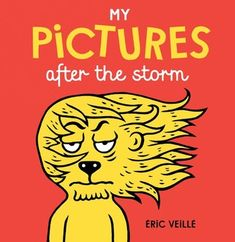 """(Gecko Press) With its funky format, clever rhymes and funny images, My Pictures after the storm is a witty and inventive take on """"before"""" and """"after."""""""