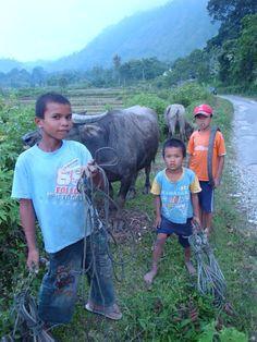 Boys good workers. In Pulau Samosir Sumatra Indonesia