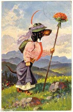POSTCARD GERMAN 1911 DOG FEMALE DACHSHUND HIKING