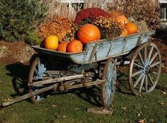 Would love to have an old wagon in the front yard to decorate for the seasons and flowers in the summer!! Paint farm's name on the side