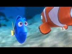 Screencap Gallery for Finding Nemo Bluray, Pixar). A clown fish named Marlin lives in the Great Barrier Reef loses his son, Nemo. Disney Pixar, Film Disney, The Incredibles 2004, Toy Story 1995, Finding Nemo 2003, Pixar Movies, Ted Talks, Look At You, Screenwriting