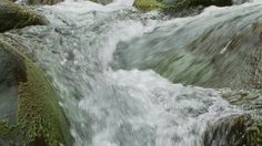 Calming Stream 3 by mountairyfilms Calming water from Iao Valley in Maui Hawaii.Shot with a Sony EX3.