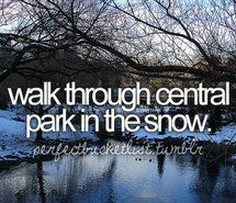 before i die, bucket list, bucketlist, central, central park (Full Size)