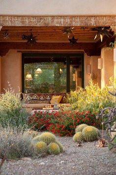Xeriscape Garden In Bloom Xeriscape Landscaping Boxhill Landscape Design Tucson, AZ Succulent Landscaping, Modern Landscaping, Backyard Landscaping, Backyard Ideas, Garden Ideas, Desert Backyard, Big Backyard, Wedding Backyard, Buy Flowers Online