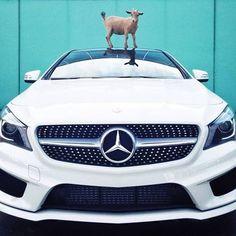 Mercedes-Benz CLA #mbhess