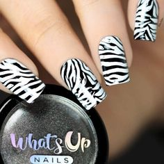 Zebra print nail design ideas to go wild and trendy from tip to toe. Learn how to create zebra nails and choose the nail art that resonates in you best. Zebra Nail Art, Zebra Print Nails, Chic Nails, Diva Nails, Trendy Nail Art, Cool Nail Art, White Zebra, Pink Zebra, Nail Arts