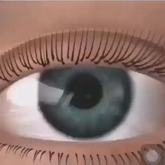 Qingdao Galash Lashes Factory has been a leading professional eyelash supplier since 1995 in China.main products are handmade eyelash extensions.