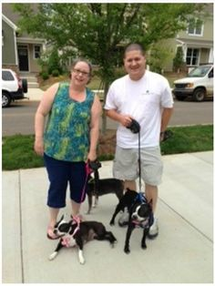 Sugar has found her forever home!