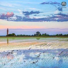 """FOTO DEL GIORNO DI@mirkocostantiniphotography  Mirko ci porta a Casaleggio Novara con questa splendida  fotografia delle """"terre sommerse"""" Nella pianura di Vercelli e Novara si susseguono a perdita d'occhio gli specchi regolari delle risaie divisi da lunghi filari di pioppi e da canali d'irrigazione.  Il riso cresce nell'acqua e i campi devono essere allagati; perciò lungo il loro perimetro si costruiscono dei bassi argini sufficienti a trattenere l'acqua che viene immessa. Poi si semina e…"""