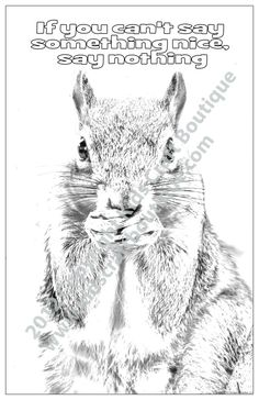 7 unique 11 x 17 inch posters in each pack, created from original animal photographs and ready for your child to color Animal Posters, Motivational Sayings, Photographs, The Originals, Children, Unique, Animals, Color, Animales