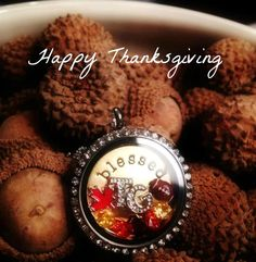 Have a Happy Thanksgiving from Origami Owl. Click on the pic to order.