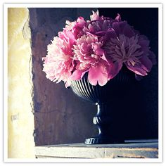 Peony's are spring but maybe for Fall - Hydrangeas, roses, freesia, lysathus, stock...  or just one flower, Dahlia's!  (I wonder if I can find the Aubergine Dahlia's).