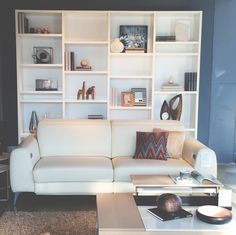 Madison sofa, coffee table and book case