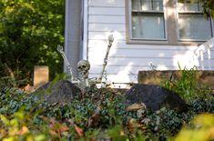 Surprise #Skeleton. #Halloween #millburnnj #morningwalk Skeleton, Marketing, Halloween, Lady, Places, Modern, Pictures, Travel, Photos