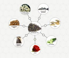 The art of tea pairings, much like wine pairing, is a sensory experience that explores the dynamic between the aromas and flavors we find in teas and food. The Darjeeling, Sea Bass, Tea Art, Coriander Seeds, Elderflower, Afternoon Tea, Tea Time, Food And Drink, Place Card Holders