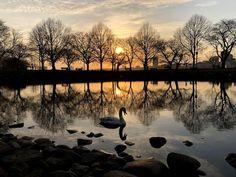 Charles River - Eastern Massachusetts - US - zoltán kovács - Google+