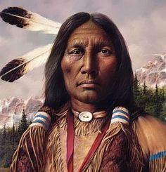 Native American Indians | native american indians believed that feathers were gifts from great ...