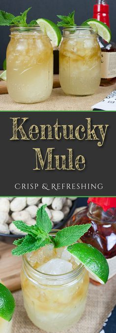 A crisp and refreshing Kentucky Mule is one of your favorite new summertime cocktails. A twist on the classic Moscow Mule. Light, crisp and refreshing! Kentucky Derby Drinks, Kentucky Mule, Kentucky Food, Kentucky Derby Party Ideas, Kentucky Hot Brown, Bourbon Kentucky, Derby Recipe, Bourbon Cocktails, Cocktail Drinks