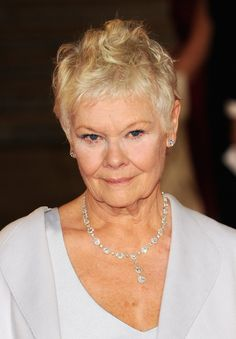"""Golden Globe Nominee - Best Actress - Musical or Comedy  Judi Dench for """"The Best Exotic Marigold Hotel."""" Liked the movie!"""