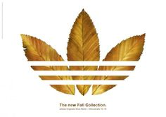 Adidas Originals: Fall collection // Advertisement // Advertising // Ads