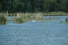 bluewater.org - Fort Gratiot Bike Path & Nature Preserve
