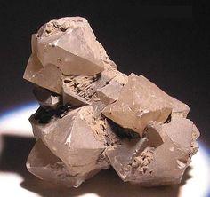 Senarmontite,  Sb2O3, Djebel Haminate, Ain Beida, Constantine province, Algeria. Size 26 x 20 x 20 mm. Senarmontite crystals up to 8 mm diameter. Copyright: © R. Lang 2005
