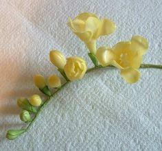 Sugarpaste flowers tutorial - Freesia Spray http://www.duskyroseveiners.co.uk/page_861446.html