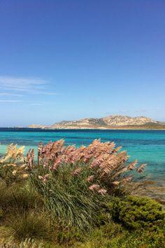 Clean water and Nature Sardinia