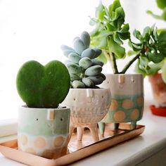 Fofura em forma de vasos tem mais fofo que esses???? {} Queria para mim!!! Inspiração via @f_o_l_h_a_paisagismo