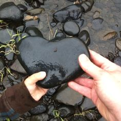 Heart rock - awesome! Wish I could find one this great...