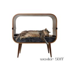 Mid-century modern cat furniture by cairudesign on Etsy https://www.etsy.com/listing/166359696/mid-century-modern-cat-furniture