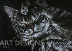 Grooming Tiger Cat, ACEO, ATC Art Card, Print, ADA-P246 via Etsy